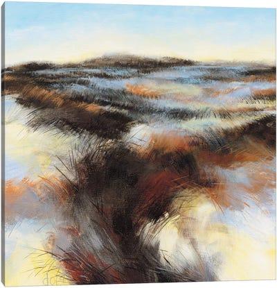Dune II Canvas Art Print