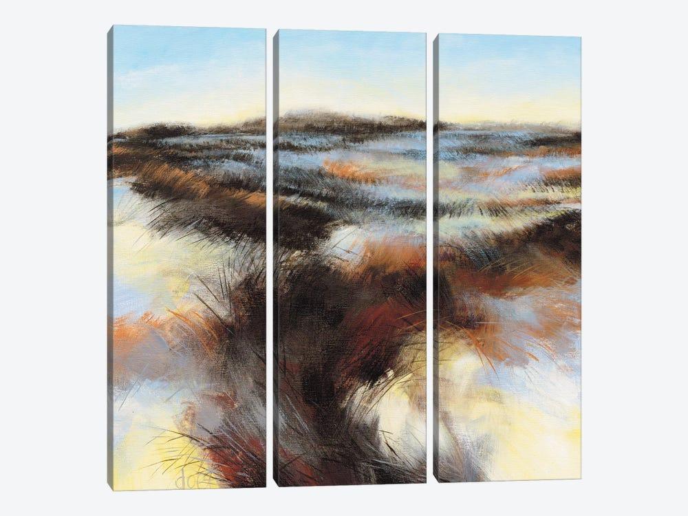 Dune II by D. Boersma 3-piece Canvas Print