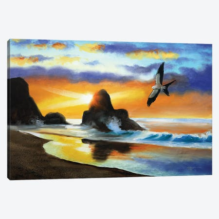 """Swallow-Tailed Kite Canvas Print #RSR106} by D. """"Rusty"""" Rust Canvas Print"""