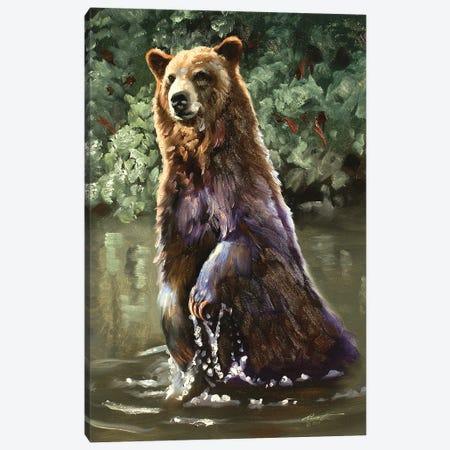 "Bear Taking A Dip Canvas Print #RSR11} by D. ""Rusty"" Rust Canvas Print"