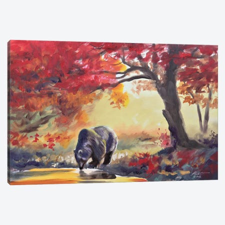 """Black Bear In Fall Color Canvas Print #RSR15} by D. """"Rusty"""" Rust Canvas Wall Art"""