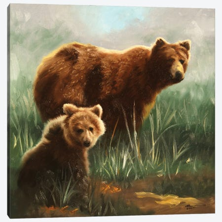"""Brown Bears In Grassy Field Canvas Print #RSR18} by D. """"Rusty"""" Rust Canvas Art Print"""