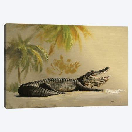 """Gator In The Sand Canvas Print #RSR203} by D. """"Rusty"""" Rust Canvas Art Print"""