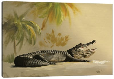 Gator In The Sand Canvas Art Print