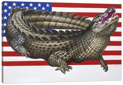 American Alligator Canvas Art Print