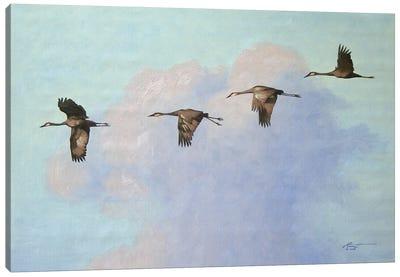 Four Cranes In Flight Canvas Art Print