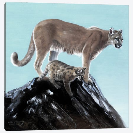 """Cougar With Pup Canvas Print #RSR225} by D. """"Rusty"""" Rust Canvas Art"""