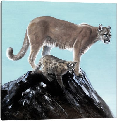 Cougar With Pup Canvas Art Print
