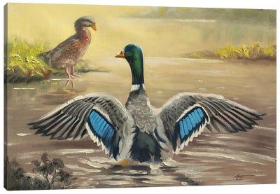 Nice Wings! Canvas Art Print