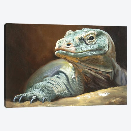 """Komodo Dragon Canvas Print #RSR231} by D. """"Rusty"""" Rust Canvas Artwork"""