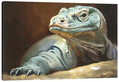 Komodo Dragon Canvas Art Print