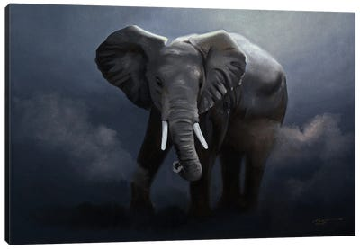 Elephant Running In The Wild Canvas Art Print