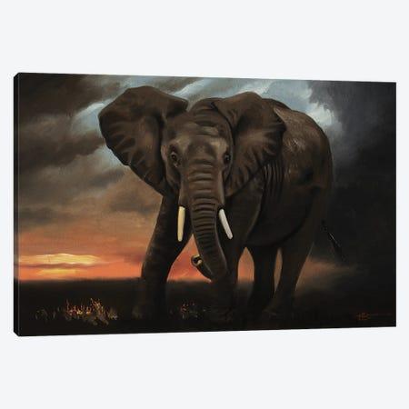 "Elephant At Dawn Canvas Print #RSR242} by D. ""Rusty"" Rust Canvas Art Print"