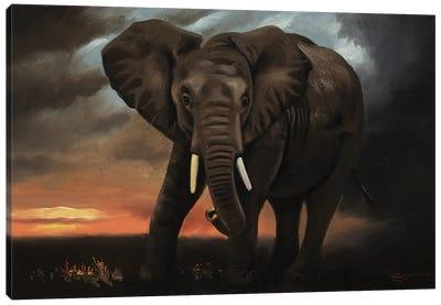 Elephant At Dawn Canvas Art Print