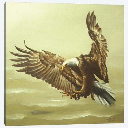 """Eagle In For A Landing Canvas Print #RSR250} by D. """"Rusty"""" Rust Canvas Artwork"""