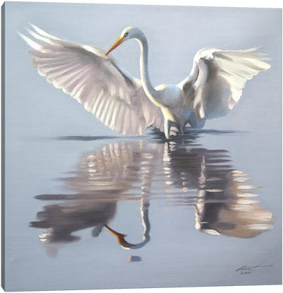 Snowy Egret Showing-Off In The Water Canvas Art Print