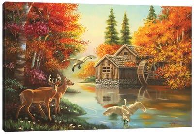 Mill Creek Wildlife Canvas Art Print
