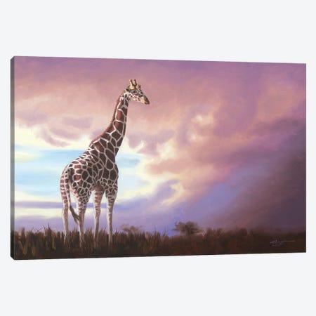"""African Giraffe Canvas Print #RSR262} by D. """"Rusty"""" Rust Art Print"""