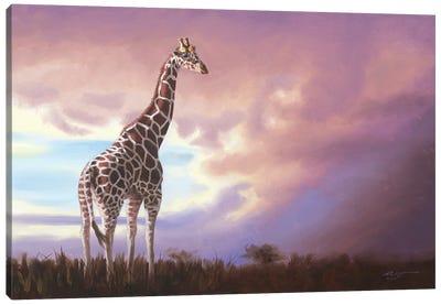 African Giraffe Canvas Art Print