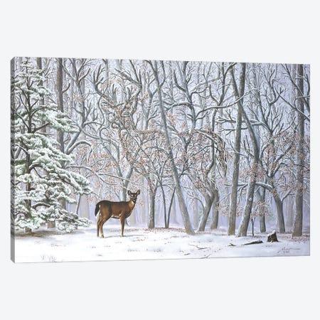 "Big Buck - Illusion Canvas Print #RSR328} by D. ""Rusty"" Rust Canvas Art"