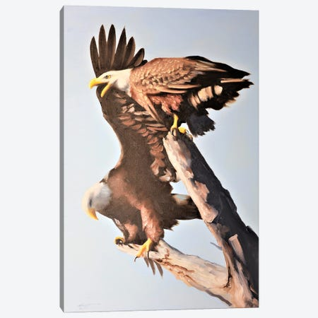 """Two Eagles Up High Canvas Print #RSR349} by D. """"Rusty"""" Rust Canvas Artwork"""
