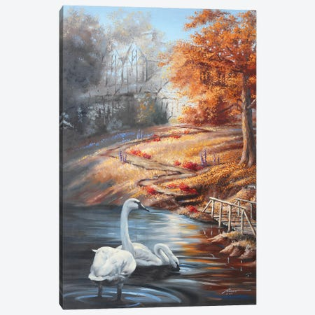 """Swans In Fall Scene Canvas Print #RSR418} by D. """"Rusty"""" Rust Canvas Wall Art"""