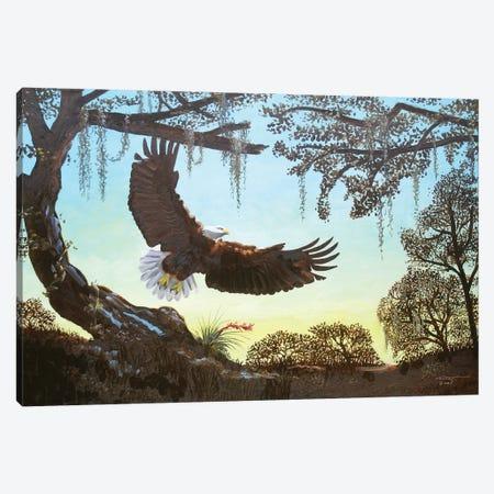 "Eagle - Illusion Canvas Print #RSR62} by D. ""Rusty"" Rust Canvas Artwork"