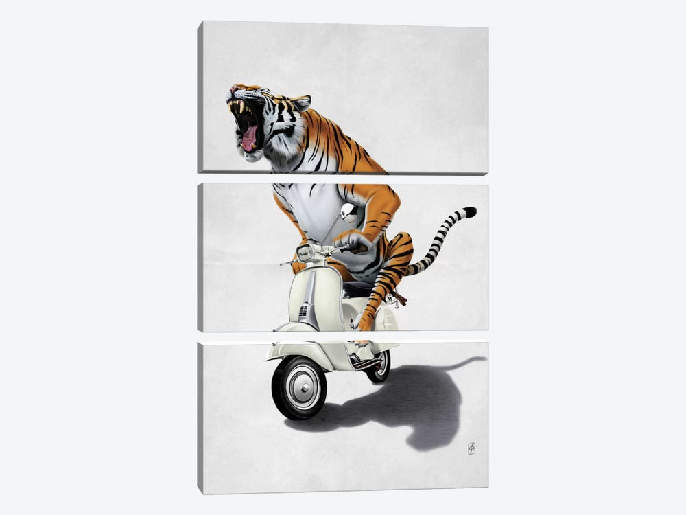 Rooooaaar! II 3-piece Canvas Art Print