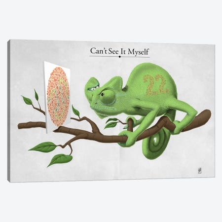 Can't See It Myself Canvas Print #RSW114} by Rob Snow Canvas Art
