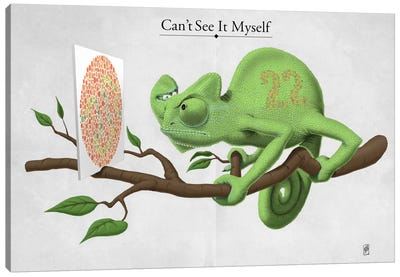 Can't See It Myself Canvas Print #RSW114