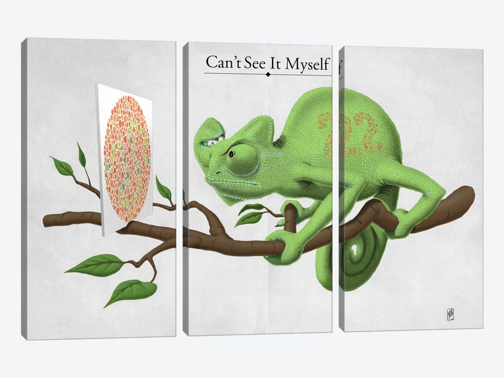 Can't See It Myself by Rob Snow 3-piece Canvas Art Print