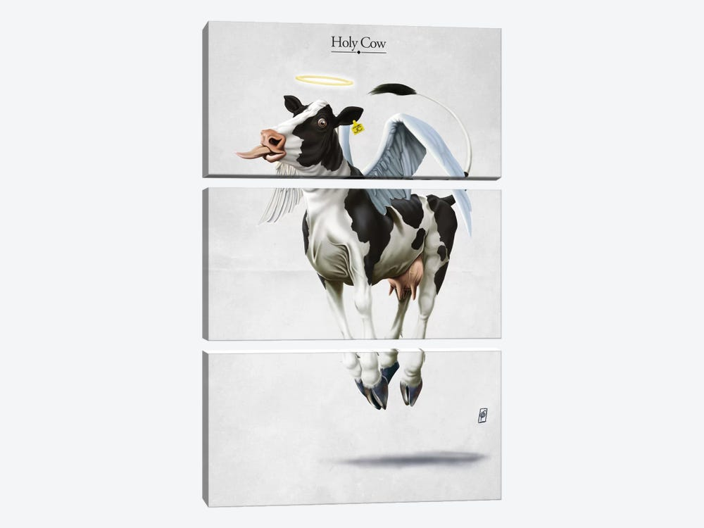 Holy Cow by Rob Snow 3-piece Canvas Print