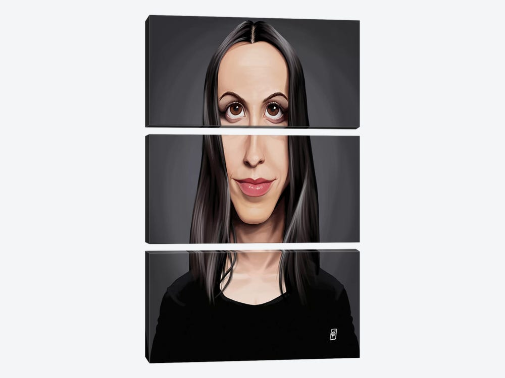Alanis Morissette by Rob Snow 3-piece Canvas Artwork
