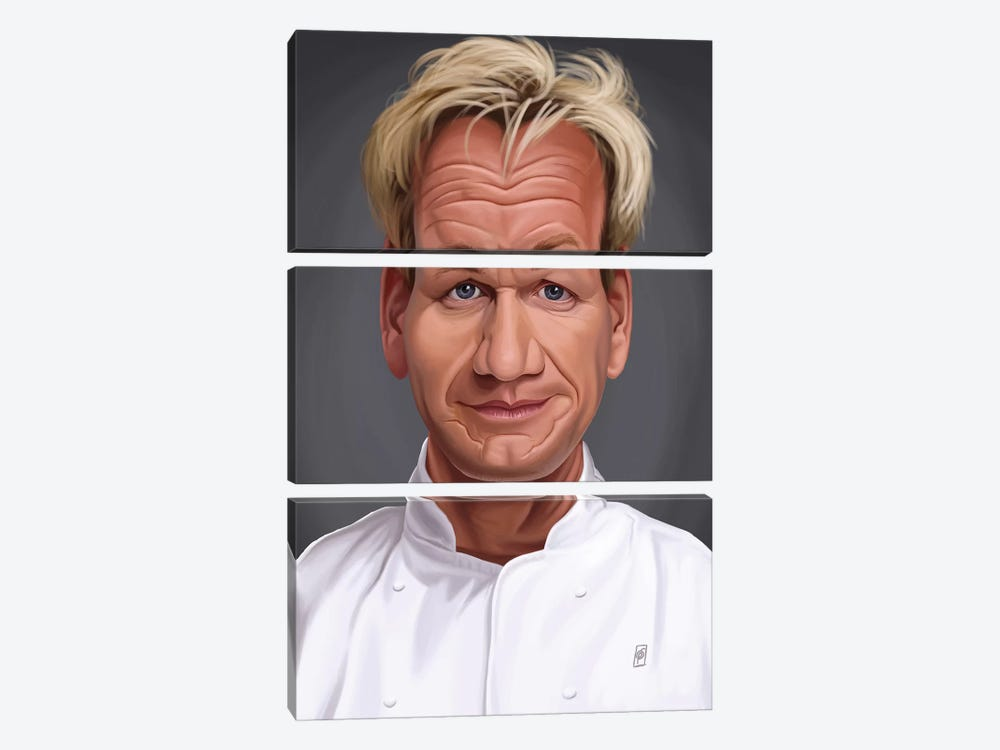Gordon Ramsey by Rob Snow 3-piece Canvas Wall Art