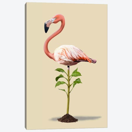 Planted III Canvas Print #RSW13} by Rob Snow Canvas Artwork