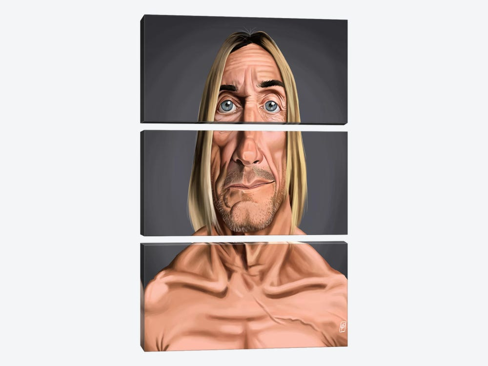 Iggy Pop by Rob Snow 3-piece Canvas Art