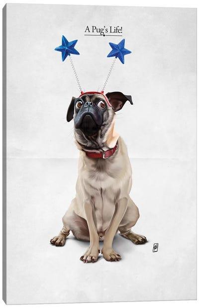 A Pug's Life I Canvas Print #RSW197