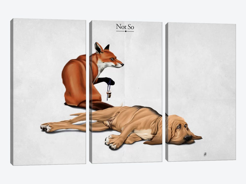 Not So I by Rob Snow 3-piece Canvas Artwork