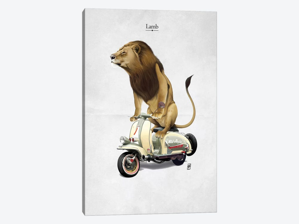 Lamb I by Rob Snow 1-piece Canvas Art Print