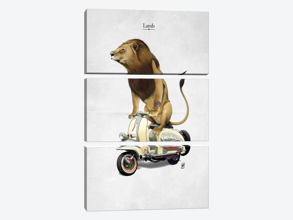 Lamb I by Rob Snow 3-piece Canvas Print