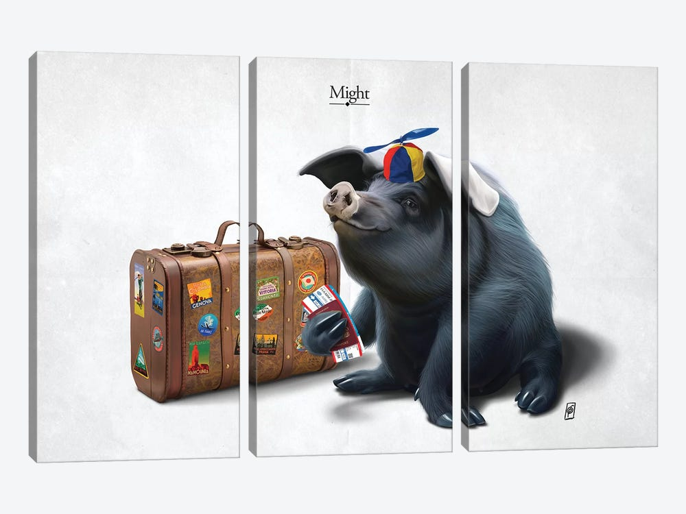 Might I by Rob Snow 3-piece Canvas Artwork