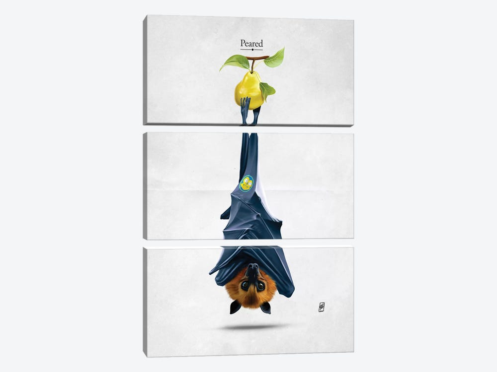Peared I by Rob Snow 3-piece Canvas Art Print
