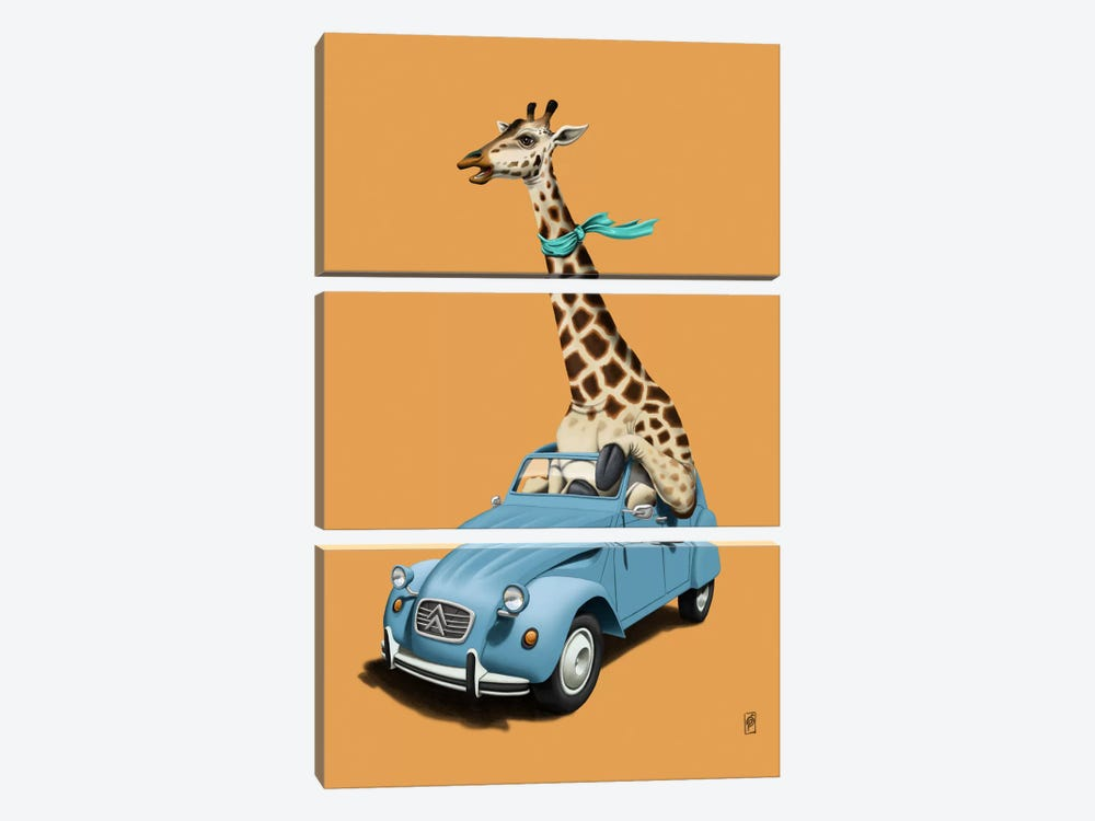 Riding High! III by Rob Snow 3-piece Canvas Wall Art