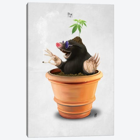 Pot I Canvas Print #RSW224} by Rob Snow Canvas Artwork