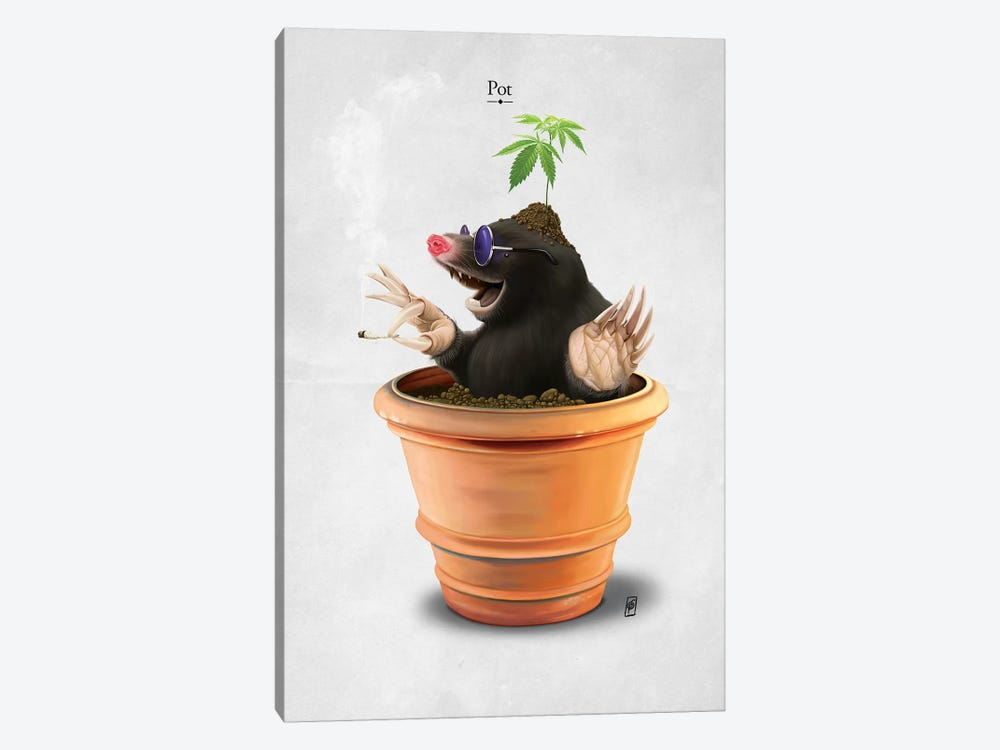 Pot I by Rob Snow 1-piece Canvas Wall Art