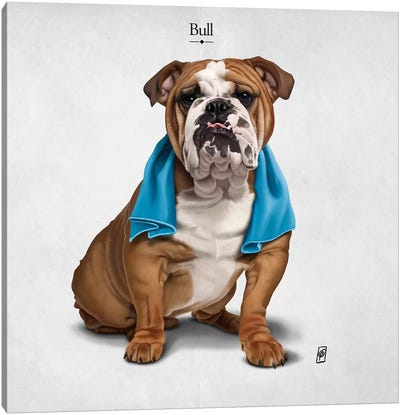 Bull I Canvas Art Print