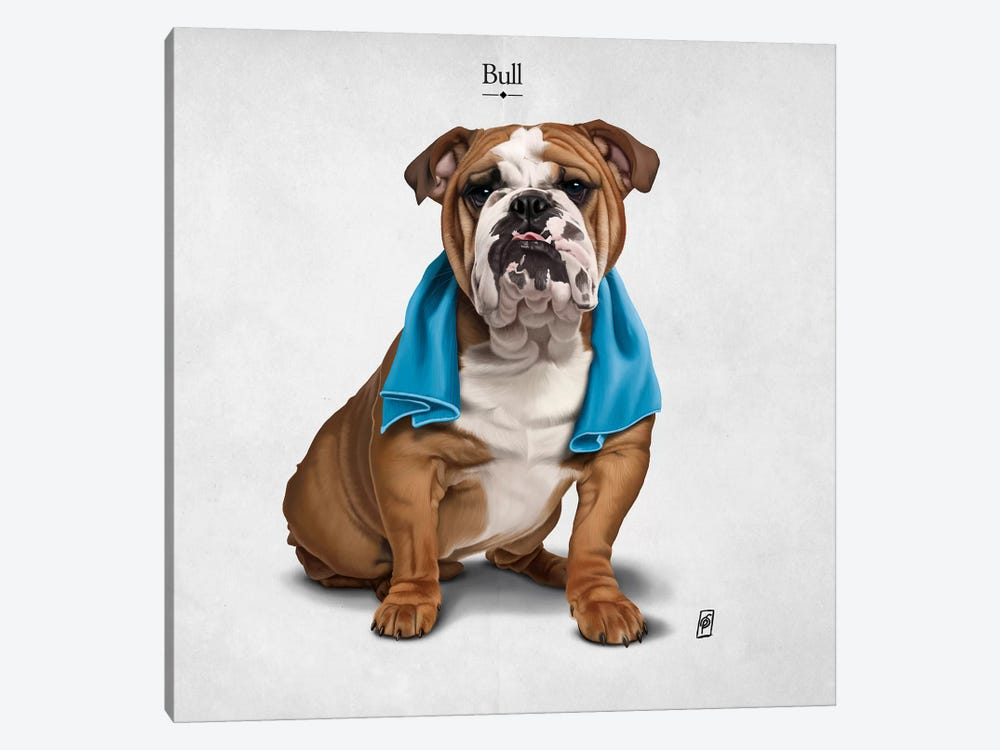 Bull I 1-piece Canvas Art Print