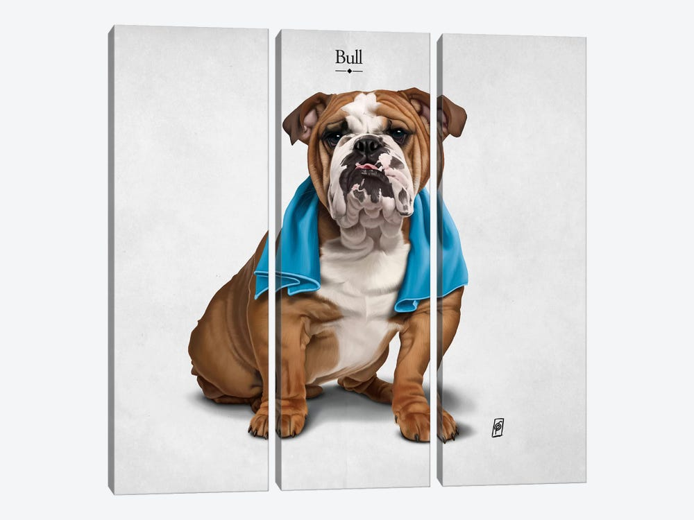 Bull I 3-piece Canvas Art Print