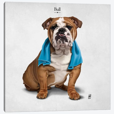 Bull I Canvas Print #RSW227} by Rob Snow Canvas Wall Art