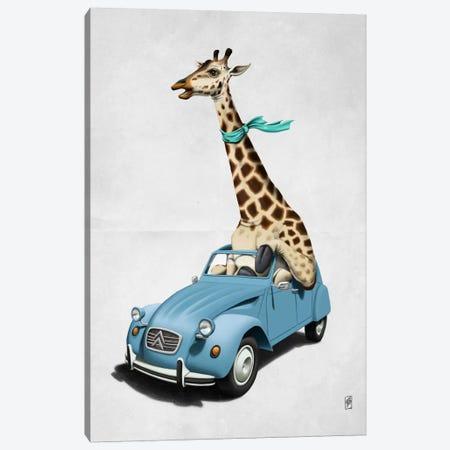 Riding High! II Canvas Print #RSW22} by Rob Snow Canvas Print